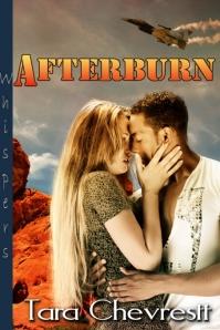 Afterburn 453x680